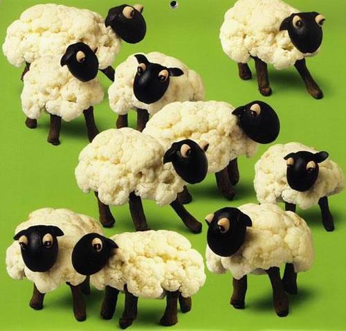 sheeps made with cauliflower