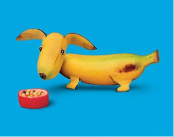 puppy made with banana